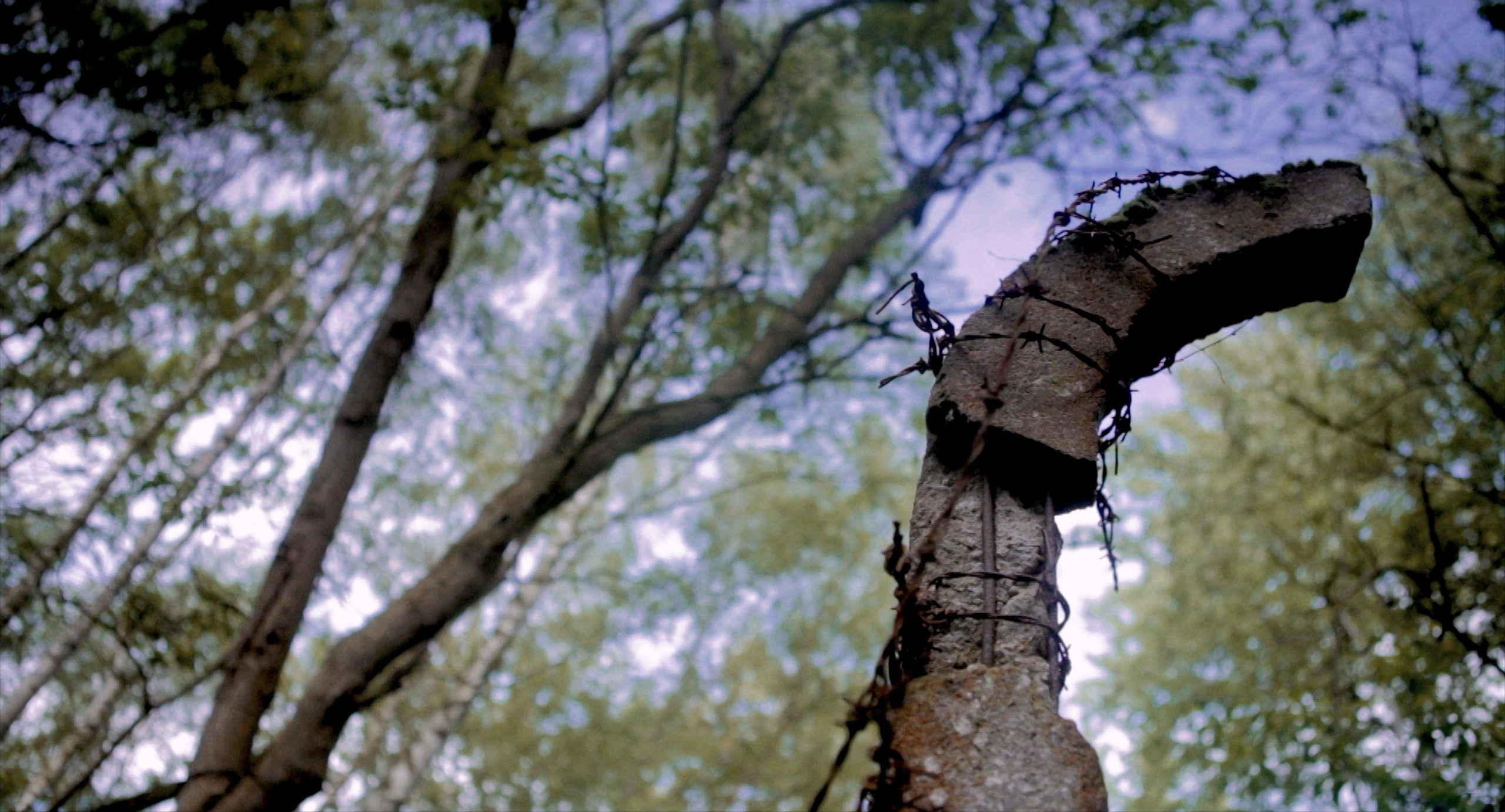 The Carousel Made of Barbed Wire (Finland) (2019) Directed by Jani Ahlstedt. Pölitz, concentration camp. Photo Jani Ahlstedt
